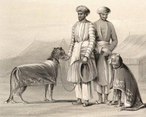 Мужчины в белых пижамах с охотничьими гепардами. Индия, 1844
