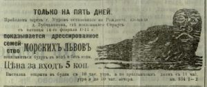 Дрессированные морские львы // Муромский край. - 1914. - 13 февраля