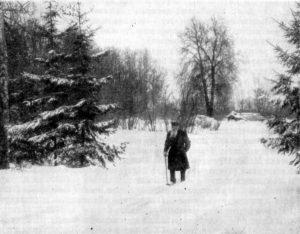 Толстой на прогулке в яснополянском парке. Январь-февраль 1908 г.