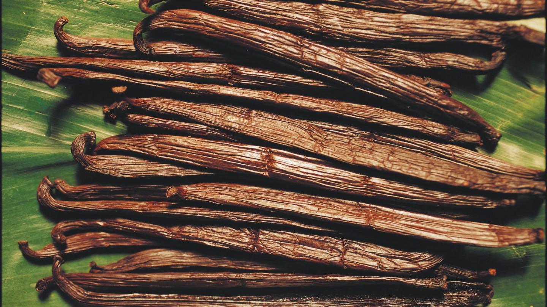 Специи. Высушенные стручки ванили
